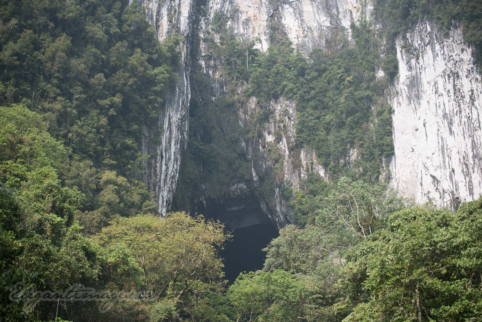 Gunung Mulu National Park- Deer Cave