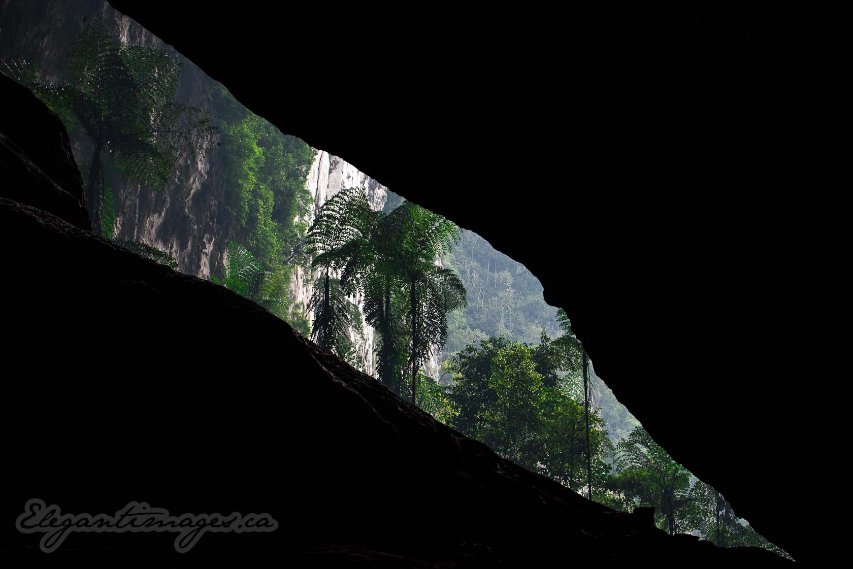 Deer Cave and Lang Cave hike in Gunung Mulu National Park