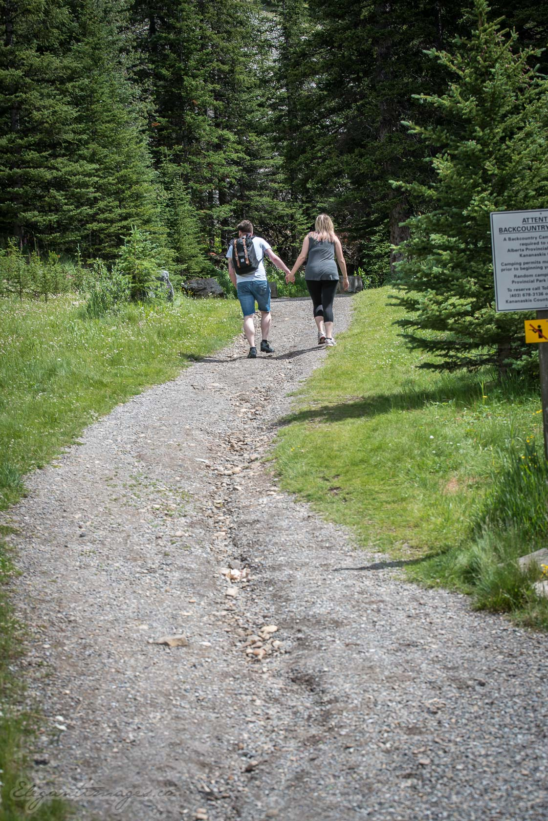 Hikers walking up to Elbow Lake Campground