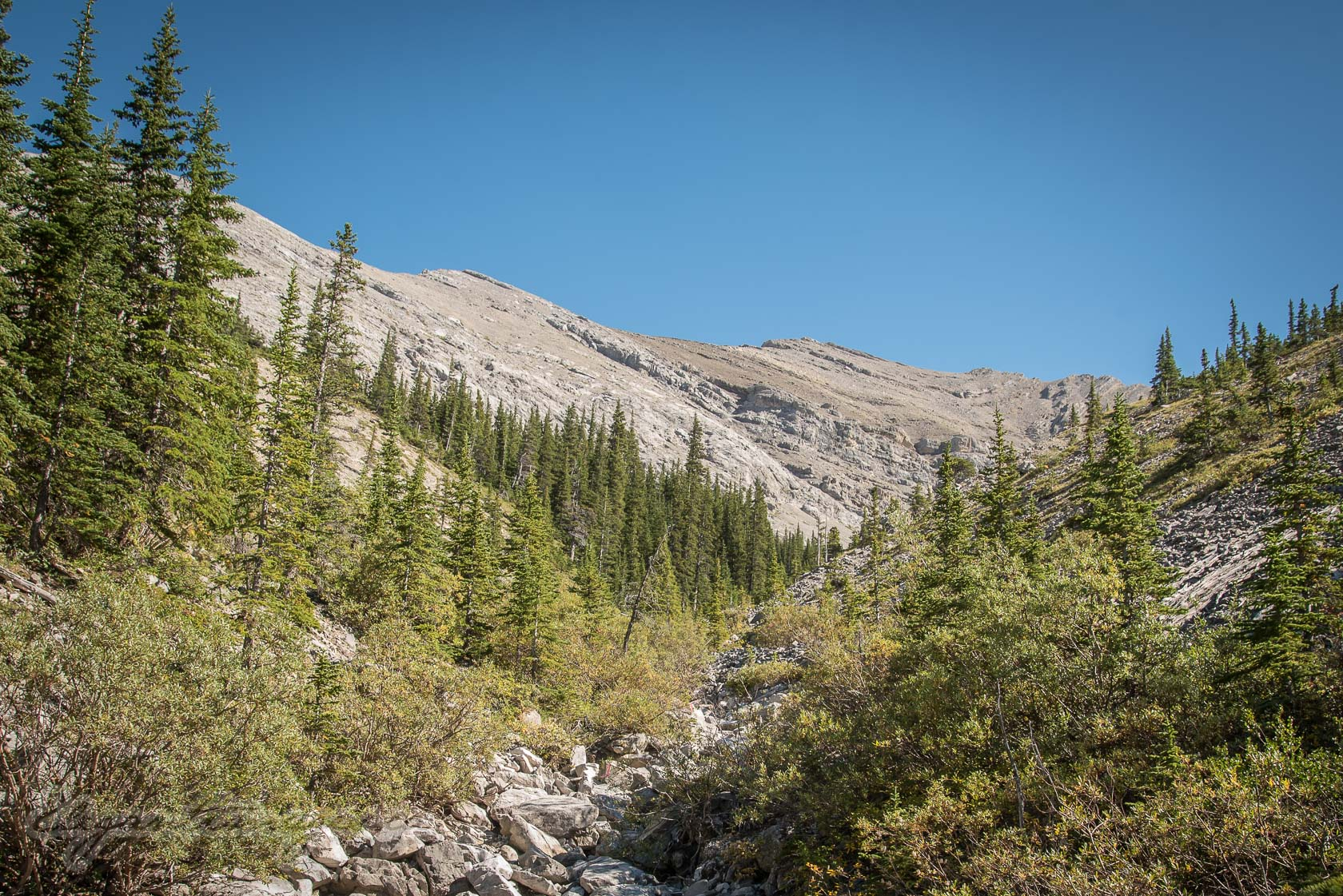 Compression Cirque Hike- Rocky creek bed