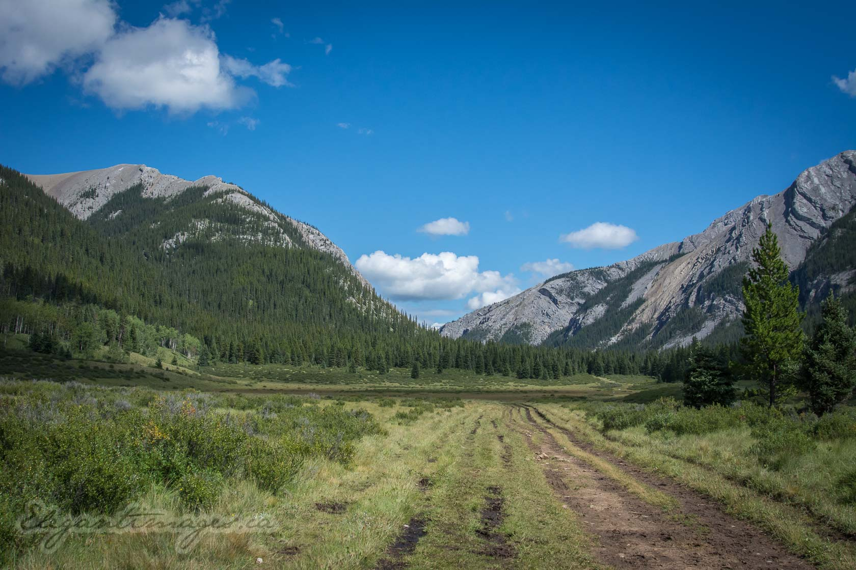 Eagle Lake Hike-Wide meadow