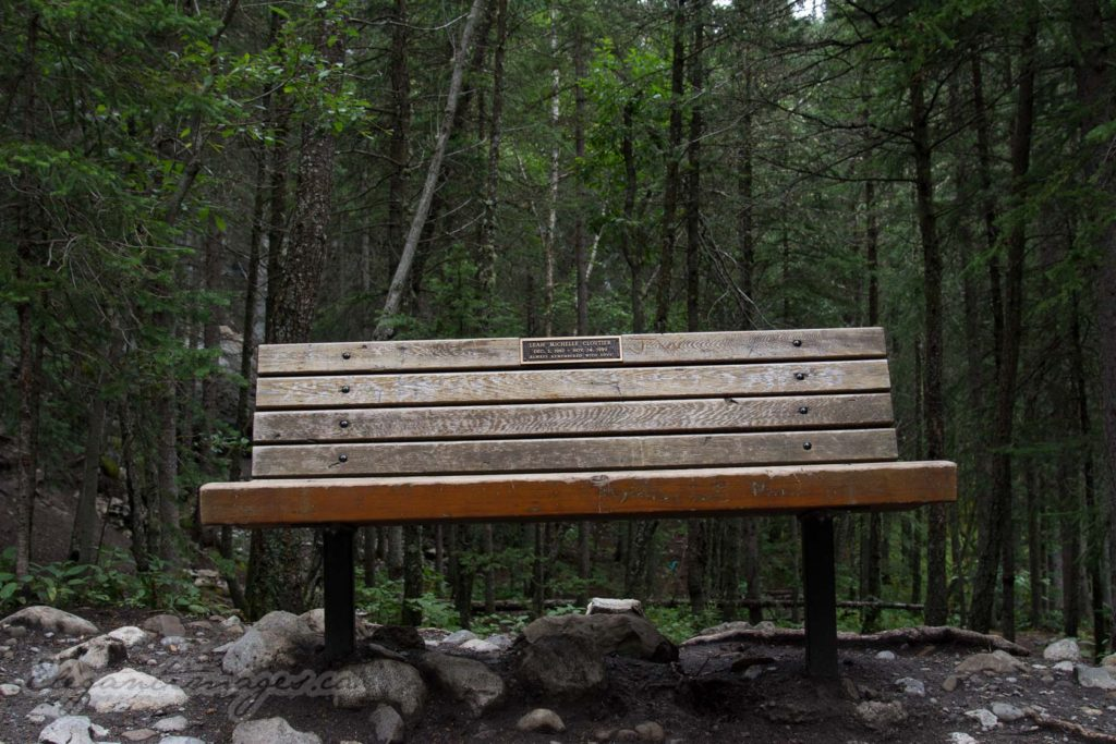 Heart Creek Canyon-Bench