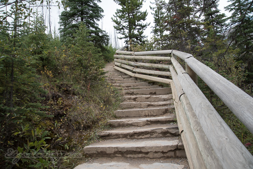 Stairs up the trail Marble Canyon Kootenay Park