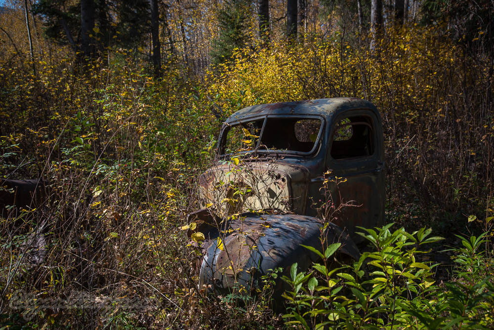 Old truck in quesnel forks