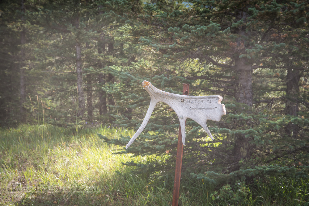 Moose antler sign post pointing to Hidden falls