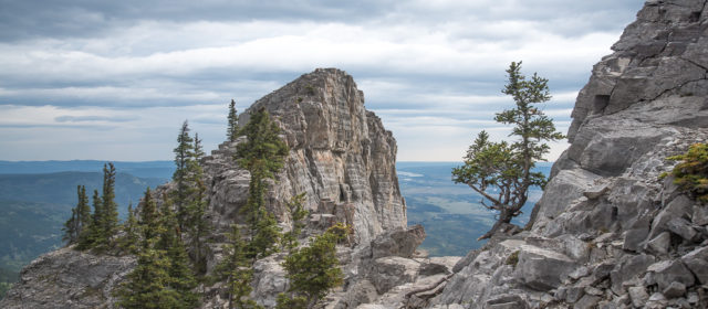 Yamnuska Mountain Hike or Scramble