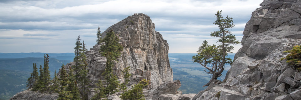 Yamnuska Mountain Hike