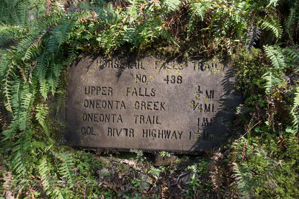 Horsetail trail marker