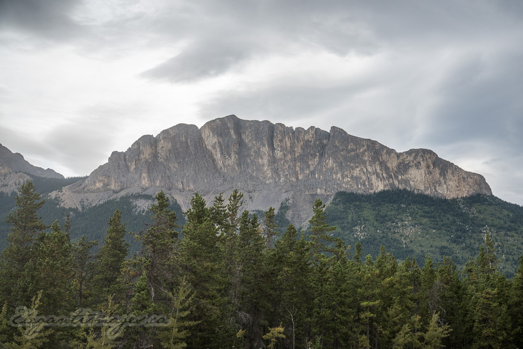 Yamnuska Mountain