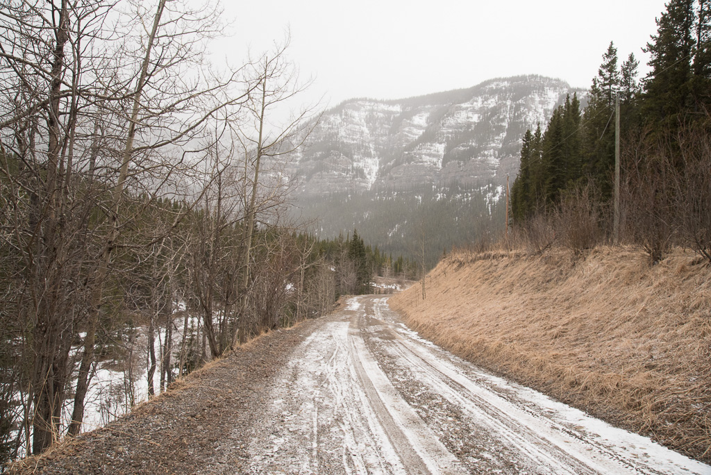 Shell/husky service road towards Canyon Creek ice cave