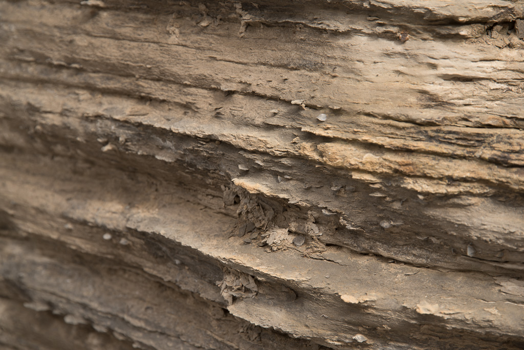 Shale layers with tiny sea shell fossils embedded in them